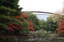 Koishikawa18.jpg
